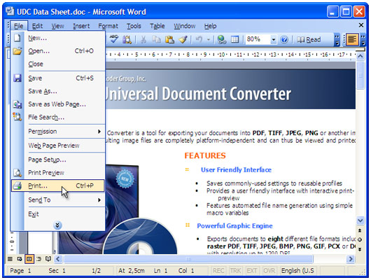 "Open the document in Microsoft Word and press ""File->Print..."" in application main menu."