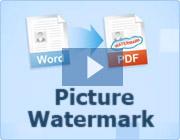 vthumb-pict-watermark